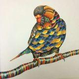 Раскрашенные раскраски птица
