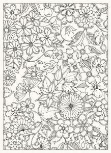 раскраска антистресс Таинственный сад открытка
