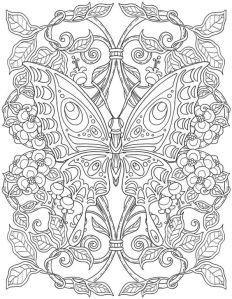 бабочки картинки раскраски распечатать