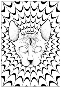 Psychedelic - Coloring Pages for Adults13