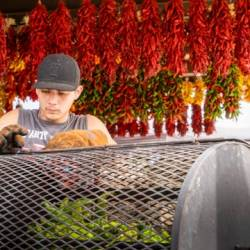 hatch chile festival canceled