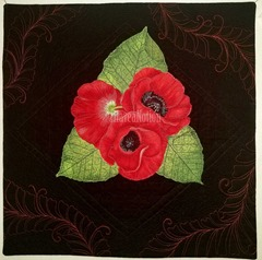 cr-Poppies-TW
