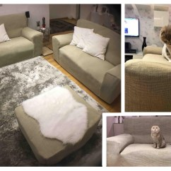 Cat Friendly Sofa Fabric Back Of Ideas Sensational Pictures