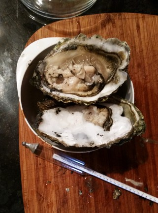 Oysters shucked and ready to be boiled