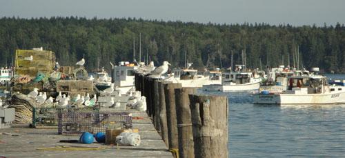dock at Owl's Head