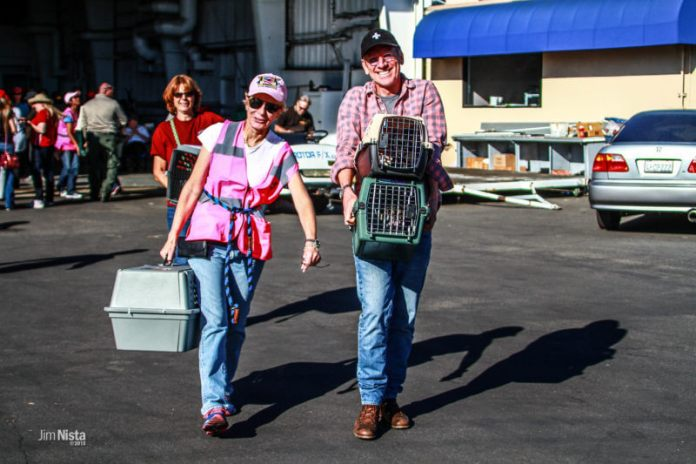 Second Chance Movement - Wings of Rescue Volunteers