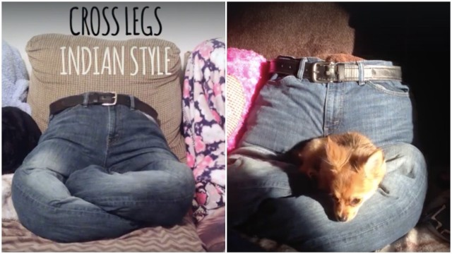 DIY NoSew Dog Bed Made From Your Old Clothes