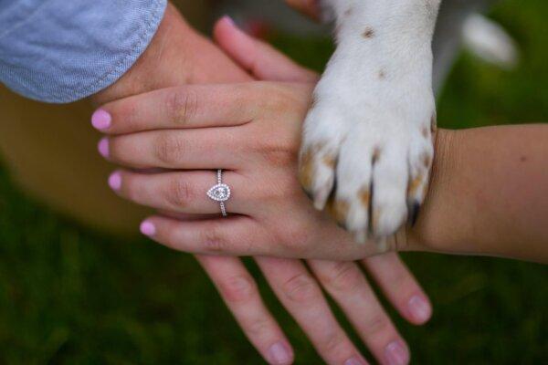 Dog Holding Paw With Couple