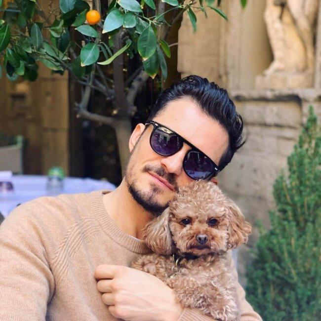 Orlando Bloom and Dog