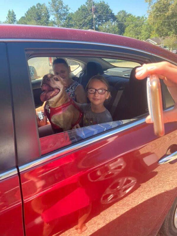 Shelter Dog Headed Home