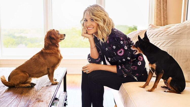 Carrie Underwood dogs