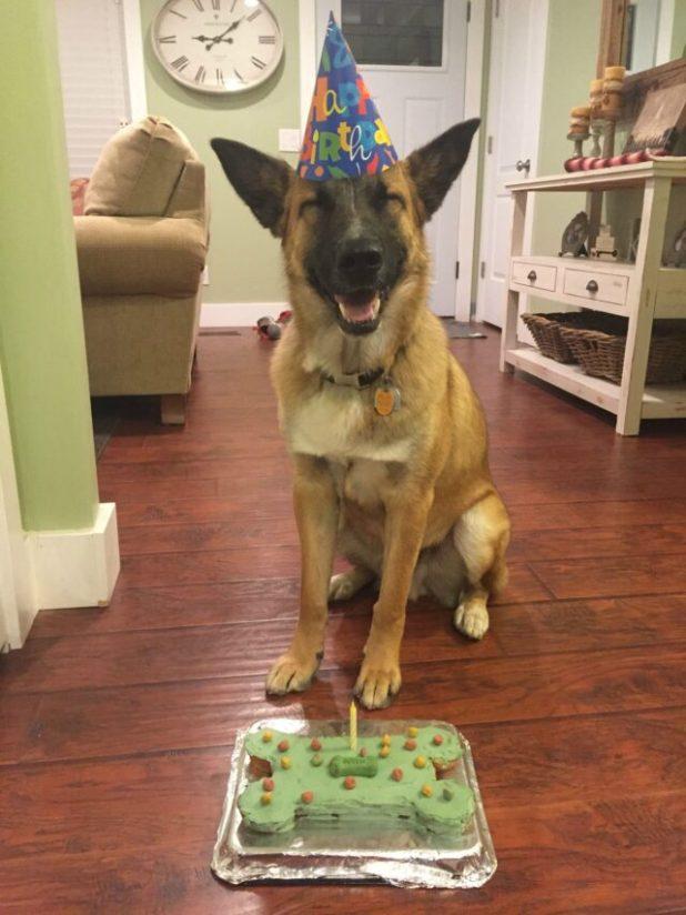 Excited birthday boy