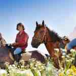 Horse Riding Photo Shoot Ideas For Equestrians