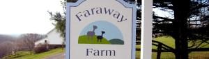 Faraway-Farm
