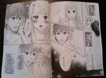 Koi ni Tsuite - Final Chapter