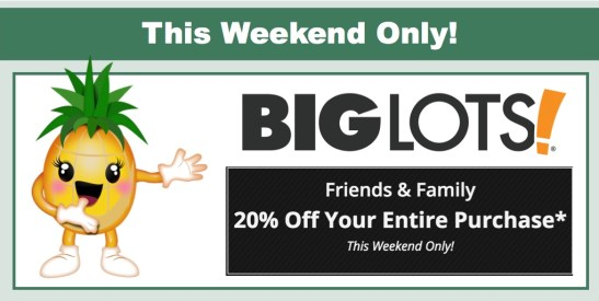 big lots 20% off entire purchase