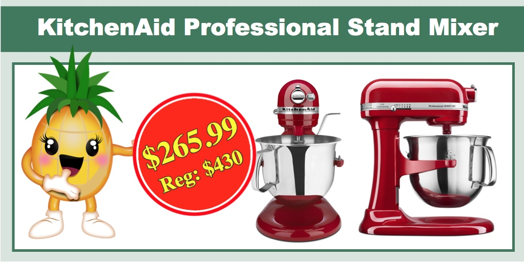 Today Only Kitchenaid Professional 6000 Hd Ksm6573cer Stand Mixer