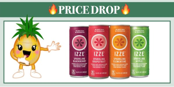 IZZE Sparkling Juice Variety Pack 24 Pack