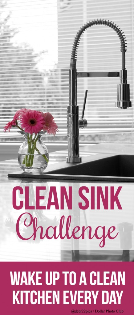 Clean Sink Challenge from I Heart Planners [June Goals at High-Heeled Love]
