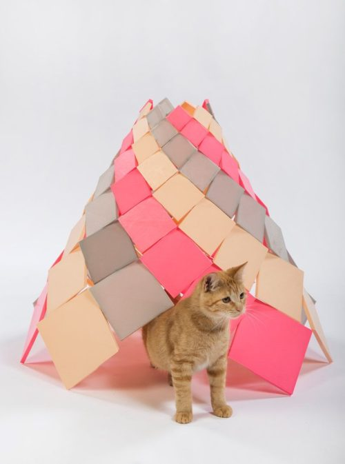 DSH// architecture Spiral Kitty