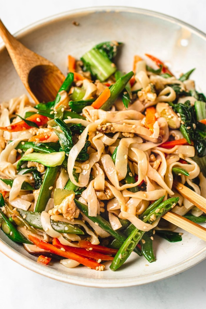 Chicken Lo Mein recipe with Vegetables and Paleo keto low carb noodles I Heart Umami