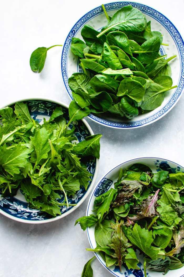Photo shows individual bowls of tatsoi, mizuna, and spicy asian greens