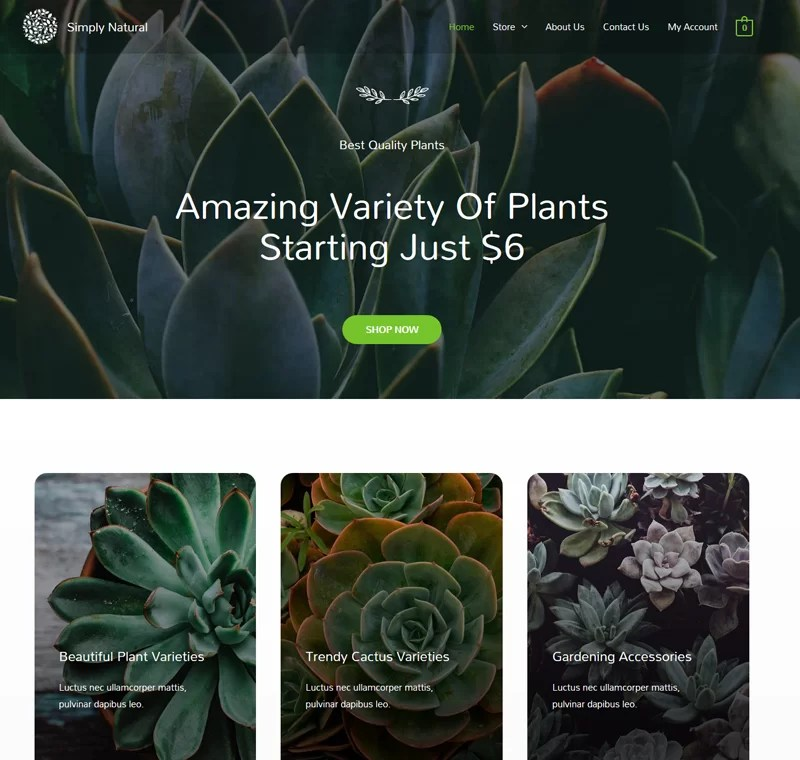 Beautiful Ecommerce Website – Plant Store
