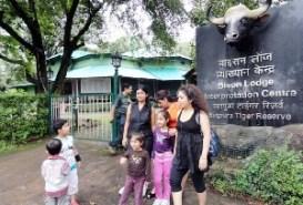 Bison Lodge and Museum Panchmarhi