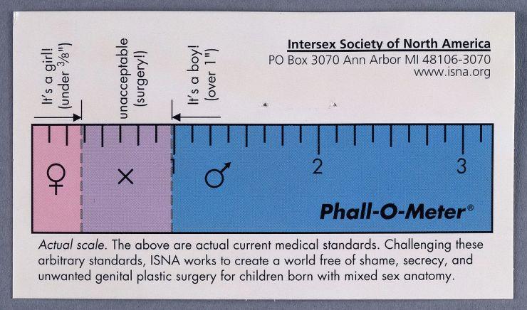 Phall-O-Meter