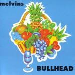 Melvins---Bullhead Stuff You Might've Missed - Melvins