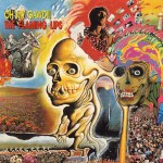 Flaming-Lips-Oh-My-Gawd Stuff You Might've Missed - Flaming Lips