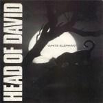 Head-Of-David-White-Elephant Artist Profile - Head Of David