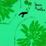 Animal-Collective-Danse-Manatee-150x150 Sonic Guide To...UK / US / Canada - Trans Am