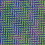 Animal-Collective-Merriweather-Post-Pavillion Artist Profile - Animal Collective
