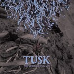 Tusk-The-Resisting-Dreamer Tusk / Pelican