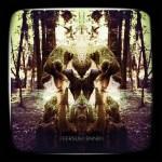 Feersum-Ennjin-Paul-Damour-cover-150x150 Artist Profile - Flipper