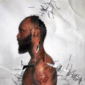 JPEGMafia-Black-Ben-Carson-300x300 (Anti) EOTY - 20 Most Interesting Records From 2016 (Lightning Pill)
