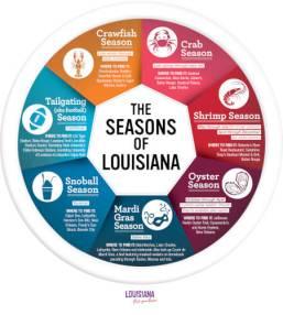 Seasons-Of-Louisiana-Infographic