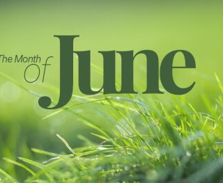 The-Month-of-June Homepage