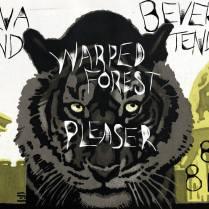Jarva Land-Warped Forest at the ER - Poster