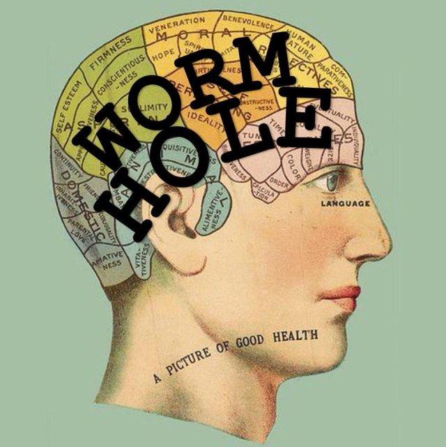 Wormhole World - Label Logo