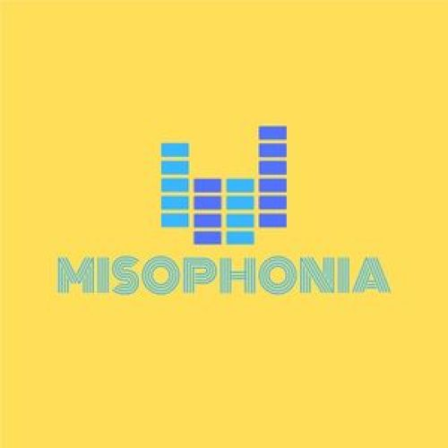 Around 2019 in 12 Weeks: Label Mix by Misophonia Records