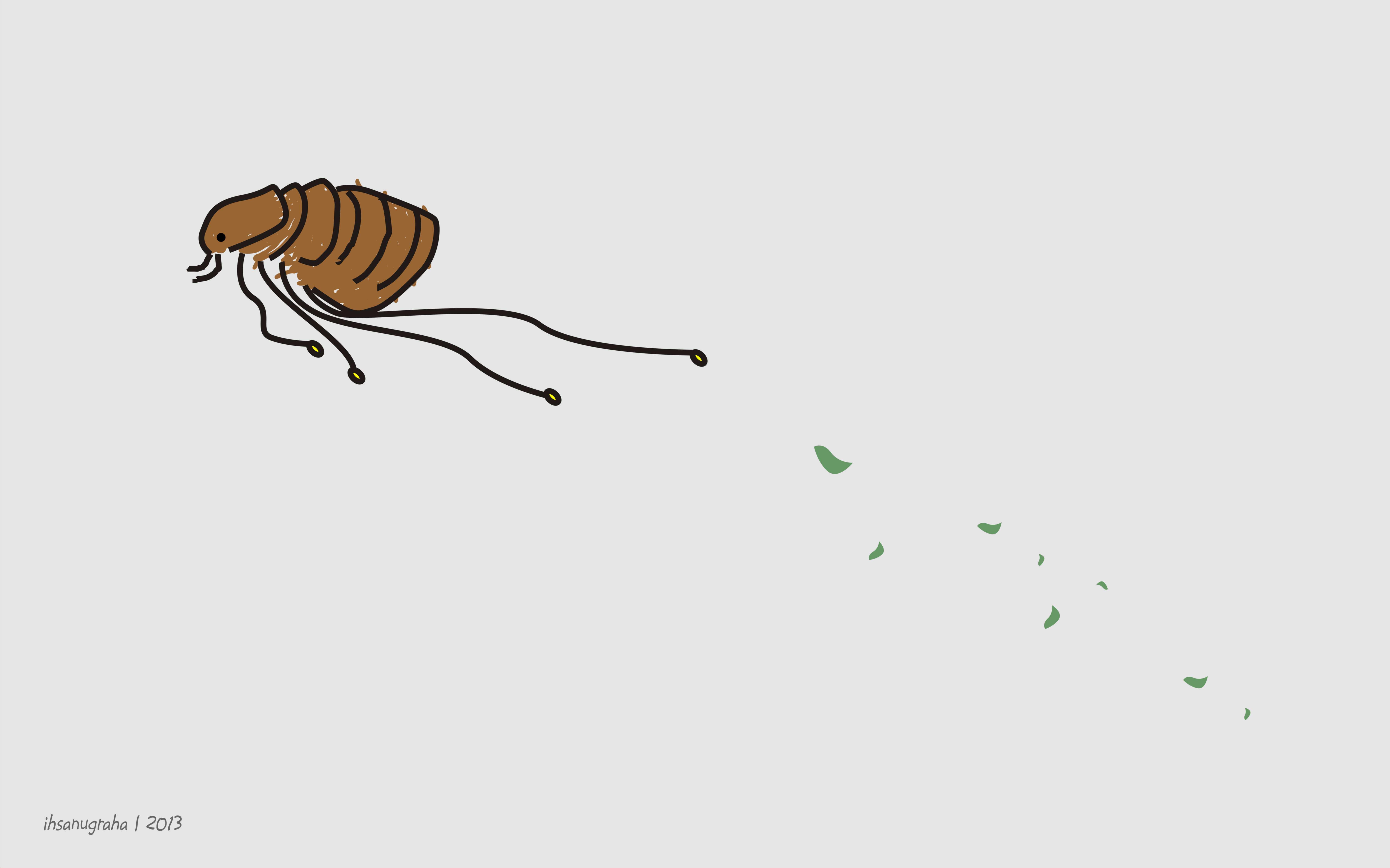 Animasi Kartun Kelinci Gambar Kartun