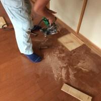 着工前の床の部分解体。床の厚み等を確認する(西宮 部分リフォーム)