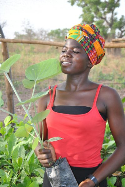 Learn Spanish in 2022 and plant a tree with IIC and Click a Tree in Ghana.