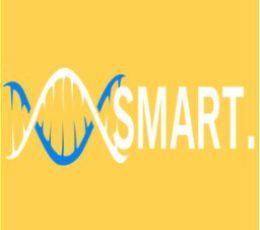 The Smart Society