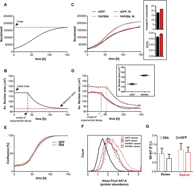 Figures and data in YAP regulates cell size and growth