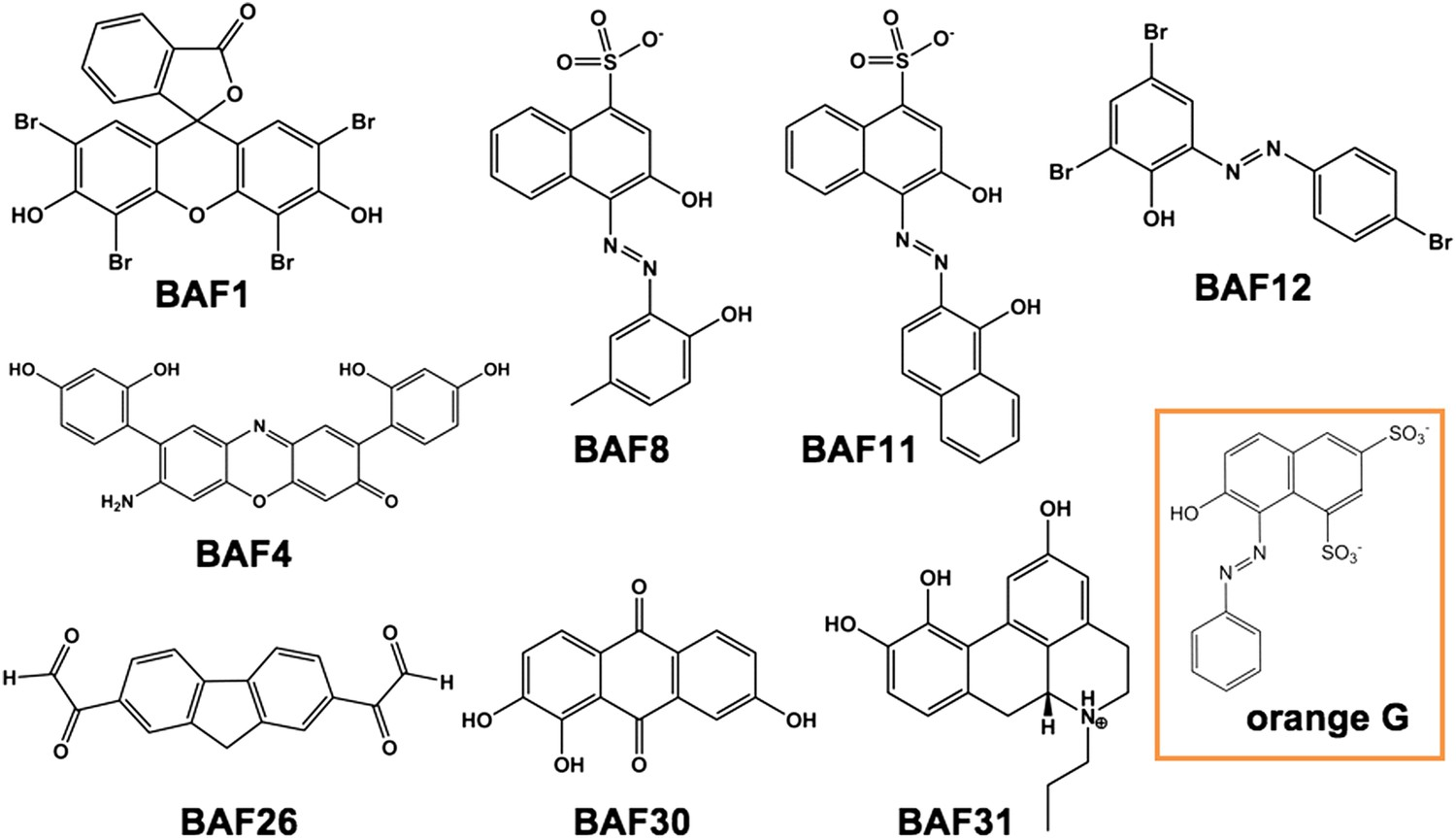 Structure-based discovery of fiber-binding compounds that