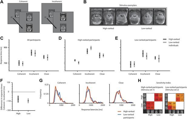 Conceptual metaphorical mapping in chimpanzees (Pan