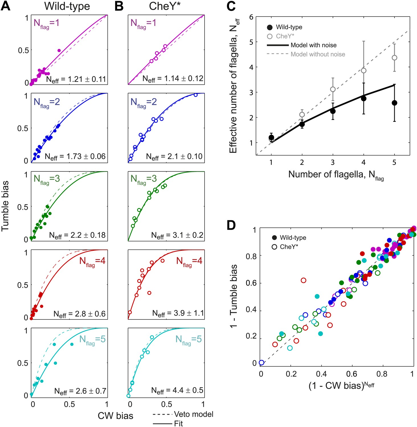 hight resolution of wild type behavior matches the veto model for cells with a lower effective number of flagella